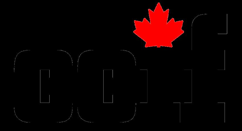 Communiqué de presse – Nouveaux membres du comité directeur du CCIF 2021